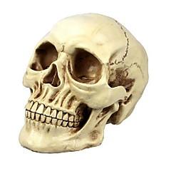 dia dos bruxas suprimentos horror truque engraçado enganar todos os adereços resina esqueleto cabeça ornamentos (modelos para adultos)