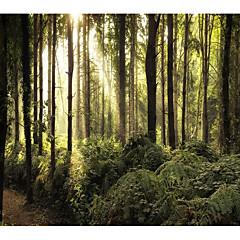 billige Veggdekor-Hage Tema Landskap Veggdekor polyester Moderne Veggkunst, Veggtepper Dekorasjon