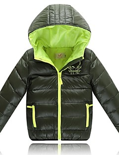 Boy's Polyester Down & Cotton Padded,Winter Solid