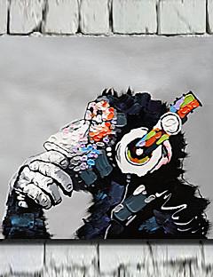 Animal Canvas Print Un Panou Gata să stea , Orizontal