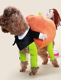 billiga Hundkläder-Katt Hund Dräkter/Kostymer Hundkläder Tecknat Regnbåge Cotton Kostym För husdjur Klassisk Gulligt Ledigt/vardag Cosplay Mode