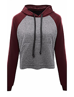Women's Daily Hoodie Solid Color Block Round Neck Micro-elastic Cotton Long Sleeve Spring