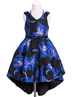 Χαμηλού Κόστους Girls' Party Wear-Κορίτσια Φόρεμα Βαμβάκι Πολυεστέρας Μονόχρωμο Φλοράλ Ζακάρ Καθημερινά Εξόδου Άνοιξη, Φθινόπωρο, Χειμώνας, Καλοκαίρι Όλες οι εποχές Αμάνικο