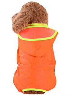 billiga Hundkläder-Hund Regnjacka Hundkläder Enfärgad Grön / Blå / Rosa Nylon Kostym För husdjur Sommar Herr / Dam Vattentät