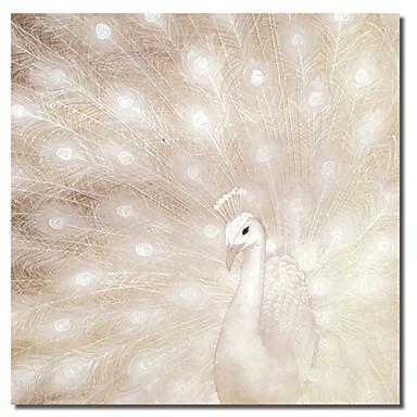 Imprimeu pânză întins Animale Un Panou Pătrat Imprimeu Decor de perete Pagina de decorare