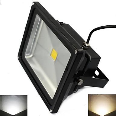 5000 lm LED Floodlight 1 leds High Power LED Warm White Cold White AC 85-265V V