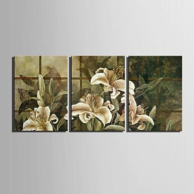 E-home® tuval sanat 3 zambak dekoratif boyama seti gergin