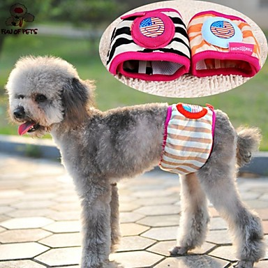 Cat Dog Pants Dog Clothes Stripe Cartoon Rainbow Cotton Costume For Pets Summer Men's Women's Casual / Daily