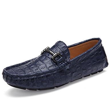 Черный / Синий / Коричневый / Белый Мужская обувь Для офиса / На каждый день Кожа Лоферы