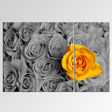 Fantasie / Freizeit / Photografisch / Skurriles / Musik / Patriotisch / Modern / Romantisch Leinwand drucken Drei PaneeleFertig zum