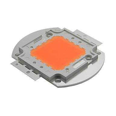 30w Brigdelux LED-Licht gesamte Spektrum 380nm wachsen ~ 840nm Perle Chip führte zu pflanzen für Pflanzen DIY wachsen