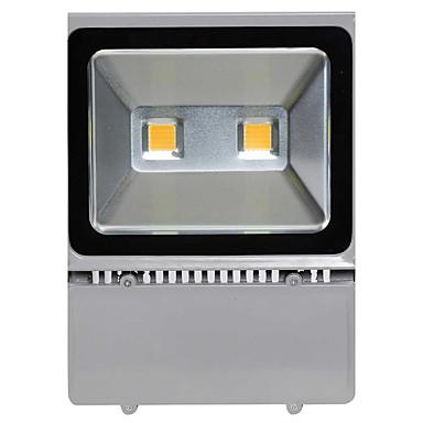 LED-schijnwerperlampen Waterbestendig Decoratief Buitenverlichting Warm wit Koel wit AC 85-265