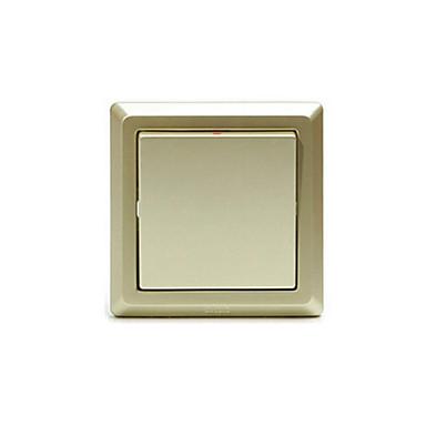 AE101-PG um interruptor de parede de controle único aberto
