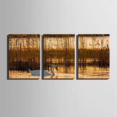 キャンバスセット 風景 動物 Modern,3枚 キャンバス 縦長 版画 壁の装飾 For ホームデコレーション
