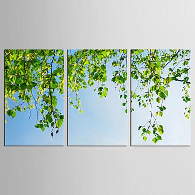 الطباعة مطبوعات قماش رغم الضغوط - مناظر طبيعية / الأزهار / النباتية كلاسيكي / معطّر