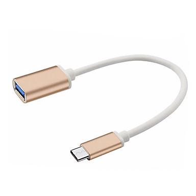 USB 3.1 Type C USB 3.1 Type C to USB 2.0 0,25 m (0.8Ft)