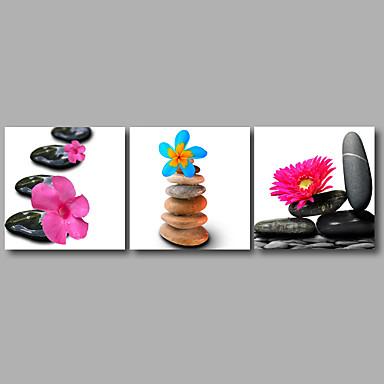 스트레치 캔버스 프린트 플로랄/보타니칼 우아한,3판넬 캔버스 수평 인쇄 예술 벽 장식 For 홈 장식