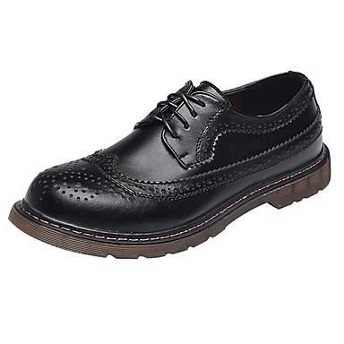 Homens sapatos Couro Primavera Verão Conforto Oxfords Cadarço para Casual Escritório e Carreira Ao ar livre Preto Marron