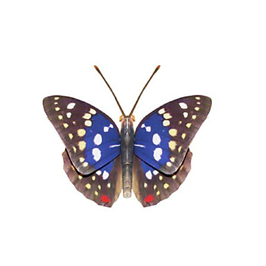 3D Puzzles Paper Model Paper Craft Model Building Kit Insect Butterfly DIY Classic Unisex Gift