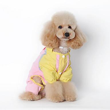 Cachorro Capa de Chuva Roupas para Cães Sólido Verde Rosa claro Fibras Acrilicas Ocasiões Especiais Para animais de estimação Homens