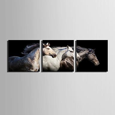 Mintás vászon Három elem Vászon Négyzet Nyomtatás fali dekoráció lakberendezési