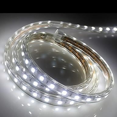 60 LEDit Lämmin valkoinen Valkoinen Sininen Vedenkestävä AC220 AC 220V