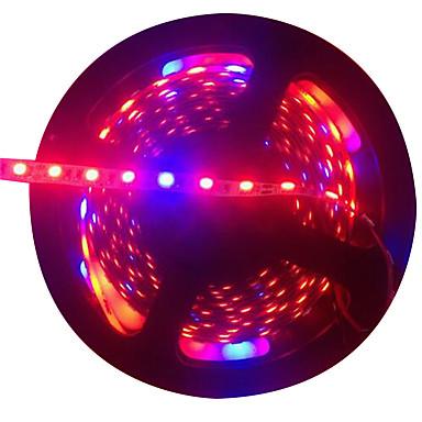 5 m Taśma świetlna Grow 300 Diody LED 5050 SMD Czerwony / Niebieski Nadaje się do krojenia / Samoprzylepne 12 V 1 szt.