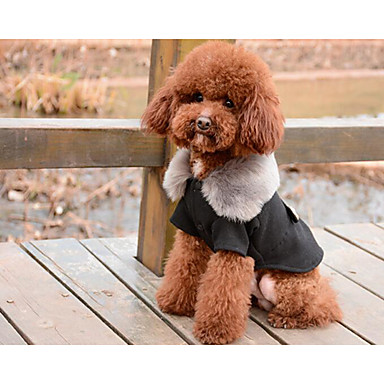 Dogs Cats Coat Dog Clothes Solid Colored Black Gray Cotton Costume