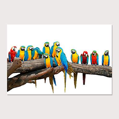 abordables Toiles-Imprimé Impressions sur toile roulées - Animaux Oiseaux Moderne Art Prints