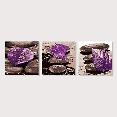 abordables Toiles-Imprimé Impression sur Toile - Photographie A fleurs / Botanique Moderne Trois Panneaux Art Prints
