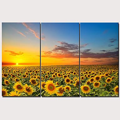 Print Strukket Lærred Print - Moderne Realisme Klassisk Moderne Tre Paneler Kunsttryk