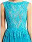 cheap Evening Dresses-A-Line Bateau Neck Floor Length Lace Tulle Formal Evening Dress with Lace by TS Couture®