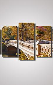 Fotografiskt Tryck Kanvas Tryck Landskap Romantik Fritid Botanisk Fotografisk Resor Fem paneler Horisontell väggdekor Hem-dekoration