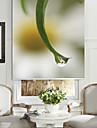 frunze stil botanic&floare mica umbra role