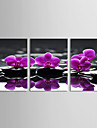 Peisaj Floral/Botanic Botanic Clasic Tradițional, Trei Panouri Orizontal Imprimeu Decor de perete Pagina de decorare