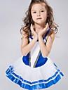 اطفال ملابس الرقص / رقص الباليه فساتين & تنورات / تنورة توتو سباندكس / شيفون / مخمل بدون كم