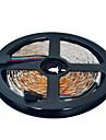 5m Fâșii De Becuri LEd Flexibile 300 LED-uri 3528 SMD RGB Ce poate fi Tăiat / De Legat 12 V