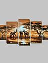 Pictat manual Abstract Orice formă,Tradițional Cinci Panouri Hang-pictate pictură în ulei For Pagina de decorare