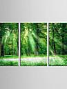 Paysage A fleurs/Botanique Classique Pastoral, Trois Panneaux Toile Format Vertical Imprime Decoration murale Decoration d\'interieur