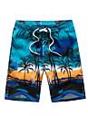 Bărbați Activ / Boho Mărime Plus Size Bumbac / Celofibră Larg / Pantaloni Scurți Pantaloni - Peteci / Imprimeu / Plajă