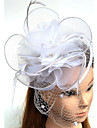 Tulle Feather Net Fascinators Hats Birdcage Veils 1 Wedding Special Occasion Headpiece