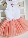 Katt Hund Klänningar Hundkläder Prinsessa Orange Fuchsia Grön Rosa Tyg Kostym För husdjur Gulligt