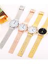 Pentru femei Quartz Ceas de Mână Chineză Cool / Ceas Casual Oțel inoxidabil Bandă Casual / minimalist / Modă Negru / Argint