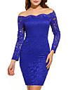 Pentru femei Mărime Plus Size Ieșire Sofisticat Bodycon Rochie - Dantelă, Mată De Pe Umăr Sub Genunchi Albastru / Primăvară / Toamnă