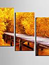 3 Toile Format Vertical Imprime Decoration murale Decoration d\'interieur