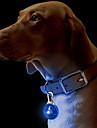 Chat Chien Colliers Etiquettes Lampe LED Sécurité Couleur Pleine Plastique Jaune Rouge Vert Bleu Rose